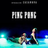Ping Pong de Integración Casanova