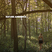 Nature Ambience by Various Artists