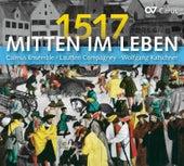 Mitten im Leben 1517 by Various Artists