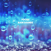 Focus! Rain Sounds by Various Artists