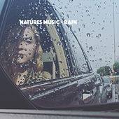 Natures Music - Rain by Various Artists