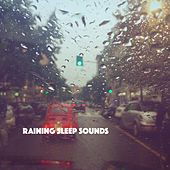 Raining Sleep Sounds by Various Artists