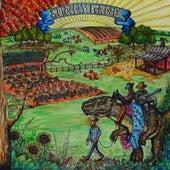 Sunnyland by Jason Hoard