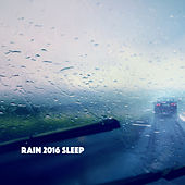 Rain 2016 Sleep by Various Artists