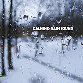 Calming Rain Sound by Various Artists