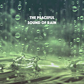 The Peaceful Sound of Rain by Various Artists