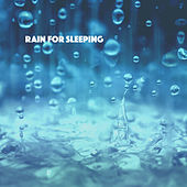 Rain for Sleeping by Various Artists