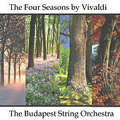 The Four Seasons - A Symphony for Strings by Bela Banfalvi