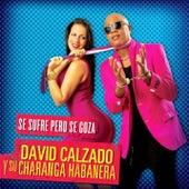 Se Sufre Pero Se Goza (Remasterizado) by David calzado y su Charanga Habanera