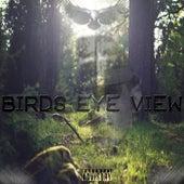 Birds Eye View von Discrete