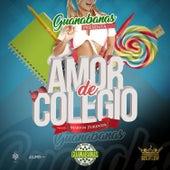 Amor de Colegio de Las Guanabanas