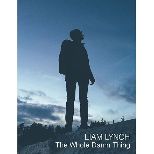 The Whole Damn Thing by Liam Lynch