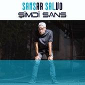 Şimdi Sans von Sansar Salvo