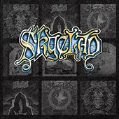 A Bellyful of Emptiness: The Very Best of the Noise Years 1991-1995 by Skyclad