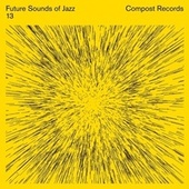 Future Sounds Of Jazz Volume 13 by Various Artists