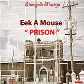 Prison - Single by Eek-A-Mouse
