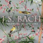 J.S. Bach: Goldberg Variations by Pieter-Jan Belder
