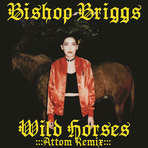 Play & Download Wild Horses by Bishop Briggs | Napster