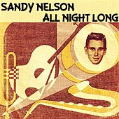 All Night Long by Sandy Nelson