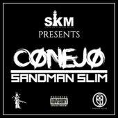 Sandman Slim by Various Artists