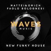 New Funky House de Various Artists