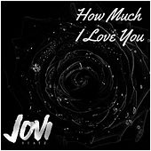 How Much I Love U by Jovi
