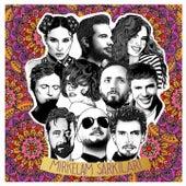 Mirkelam Şarkıları by Various Artists