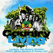 Country Living Riddim by Various Artists