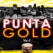 Punta Gold, Vol. 1 by Various Artists