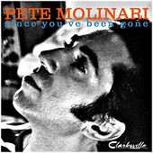 Since You've Been Gone by Pete Molinari