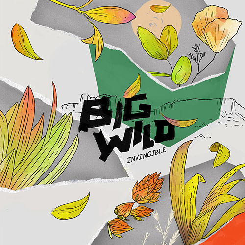 Invincible EP by Big Wild