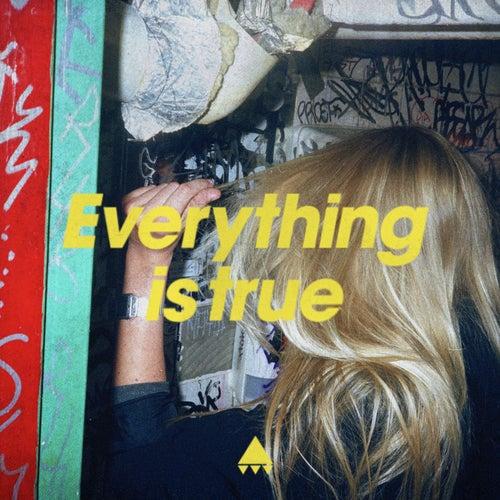 Everything Is True von Av Av Av