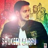 Shokeen Gabru by J. Sumit