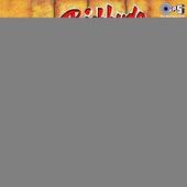 Bichhuda by Ila Arun