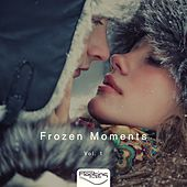 Frozen Moments, Vol. 1 de Various Artists