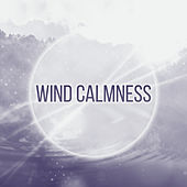 Wind Calmness – Nature Sounds to Relax, New Age Music, Soothing Waves, Healing Therapy de Sounds Of Nature