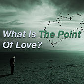 What Is The Point Of Love? by Various Artists