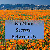 No More Secrets Between Us by Various Artists