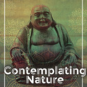 Contemplating Nature – Music for Meditation, Relaxation Sounds, Soothing Guitar, Singing Birds, Pure Waves, Peaceful Mind de Healing Sounds for Deep Sleep and Relaxation