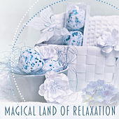 Magical Land of Relaxation – Spa Music, Chillout, Antistress Music, Buddha Lounge, Deep Sleep, Relaxation Sounds for Rest, Healing Music de Ambient Music Therapy