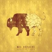 Live MGB Studio by Mil Búfalos