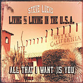 Living and Loving in the USA by Steve Lucas