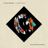Funkosphere von Peter Brown