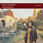 Schubert: Piano Trios de Thomas Albertus Irnberger