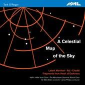 Tarik O'Regan: A Celestial Map of the Sky by Various Artists