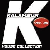 Kalambur House Collection, Vol. 29 de Dandy