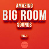 Amazing Big Room Sounds, Vol. 1 by Various Artists