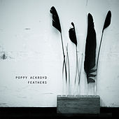 Feathers by Poppy Ackroyd