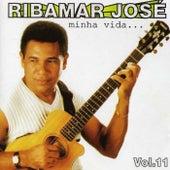Minha Vida, Vol. 11 de Ribamar José