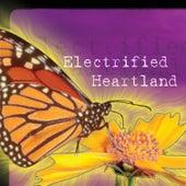 Electrified Heartland de Lindsay Tomasic
